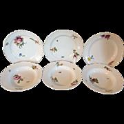 Six Antique 18th century German Meissen Porcelain Plates & Bowls with Botanical Decoration
