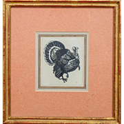 Drawing of an American Turkey Ink and Gouache on Paper in French Mat & Carved Gilt Wood Frame