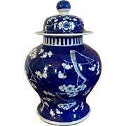 Antique 19th century Chinese Blue & White Porcelain Prunus or Hawthorne Vase Jar Urn and Cover with Kangxi Marks