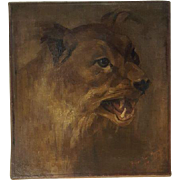 Impressionist Portrait of a Large Cat or Lion Oil on Canvas Signed & Dated 1905