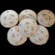 Set 6 Antique 19th century Old Paris Porcelain Nast Plates in the Sprig Cornflower Pattern