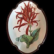 Antique Early 19th c. English Swansea Creamware Botanical Pearlware Quatrefoil Shaped Dish