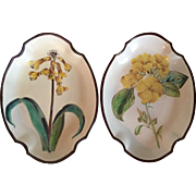 Pair Antique Early 19th c. English Swansea Creamware Botanical Pearlware Quatrefoil Shaped Dishes 1795 - 1800