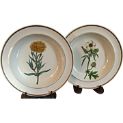 Pair Antique 18th century English Georgian Creamware Botanical Plates