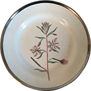 Antique Early 19th century Shorthose Creamware Pearlware Botanical Plate Decorated with Hand Painted Specimen & Silver Luster Border 1810