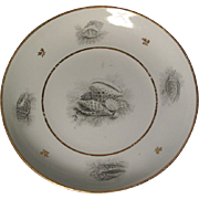 Antique Early 19th century Worcester Porcelain Flight Barr BFB Shell Decorated Plate or Bowl c. 1810