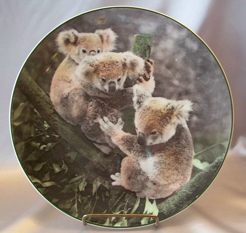 Royal Doulton Koala Bears Collector Plate