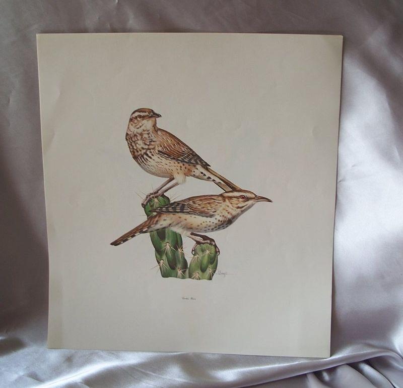 Set  Of  Four Bird Prints By  Carugati