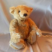Steiff Mr. Cinnamon Bear  000201