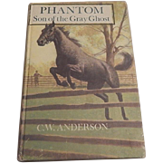 Phantom Son of the Gray Ghost by C. W. Anderson