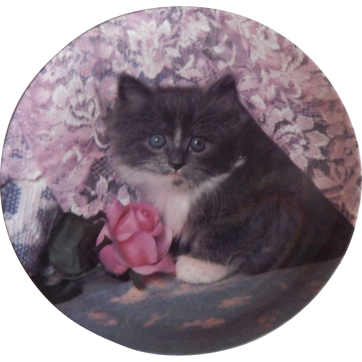 Crestley Collection In The Pink Kitten Plate