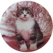 Crestley Collection Perfectly Posed Kitten Plate