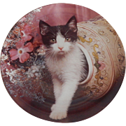 Chrestley Collection Peek A Boo Kitty  Plate
