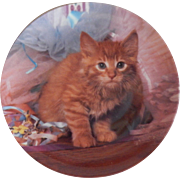 Crestley Collection Tutu Cute Kitty Cat Plate