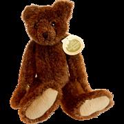 The Green Mountain Bears Mansfield