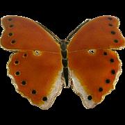 Gold Washed Sterling Enamel Butterfly Brooch