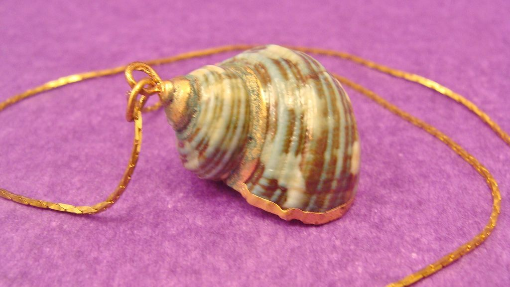 Vintage 18K Gold Plated Chain with Natural Dipped Sea Shell