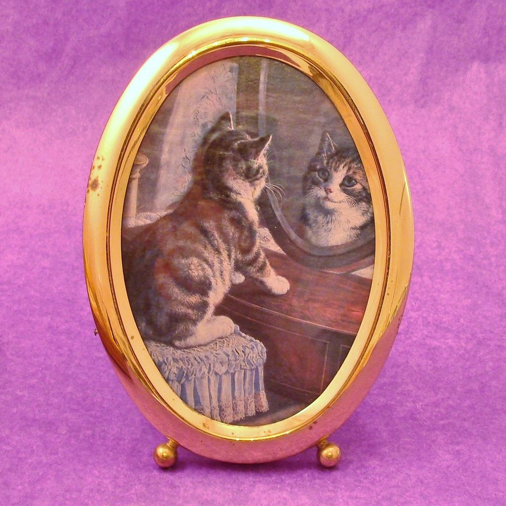 Brass Oval Framed Kitten In a Mirror Print Under Glass