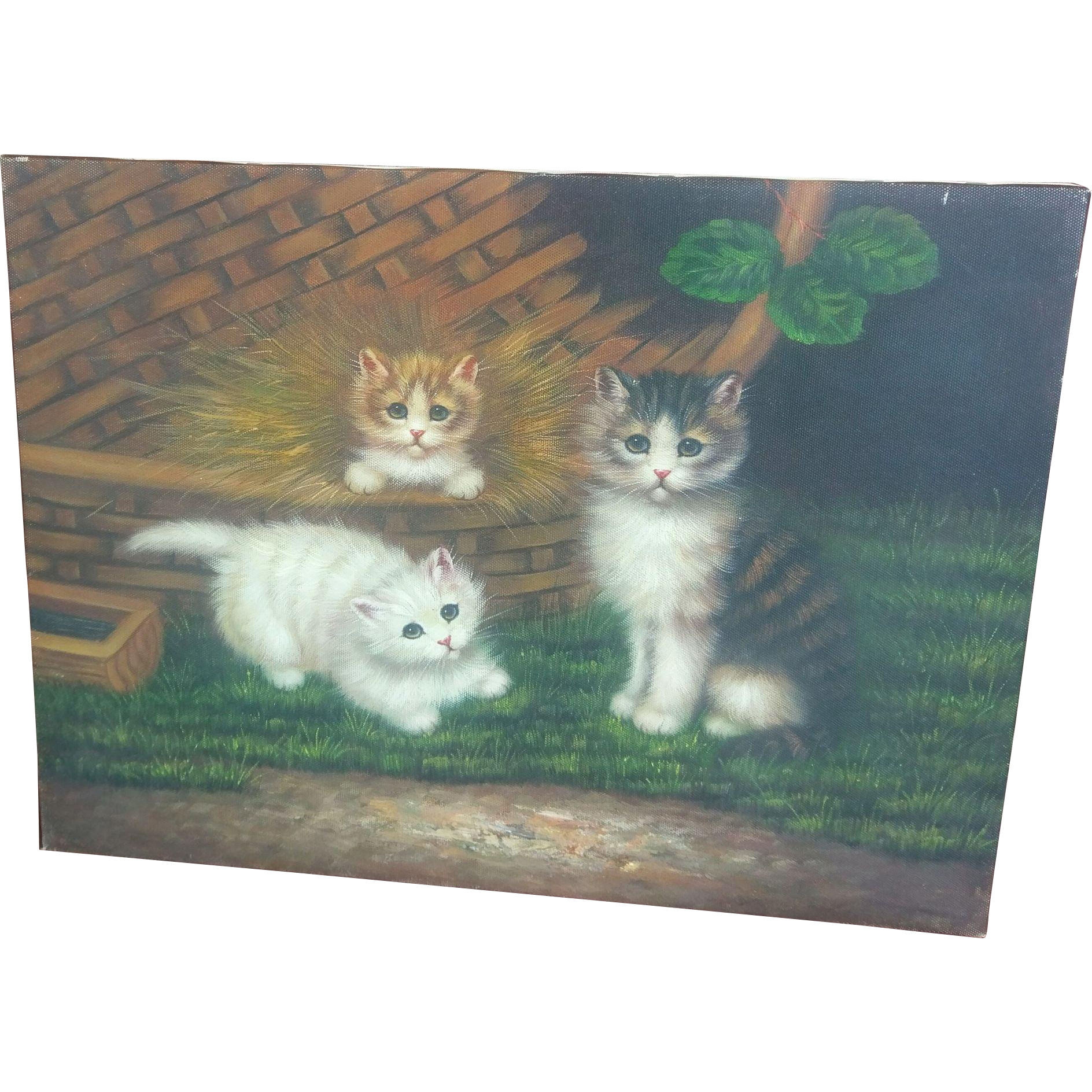 Kitten Print on Canvas with Acrylic Paint Embellishment