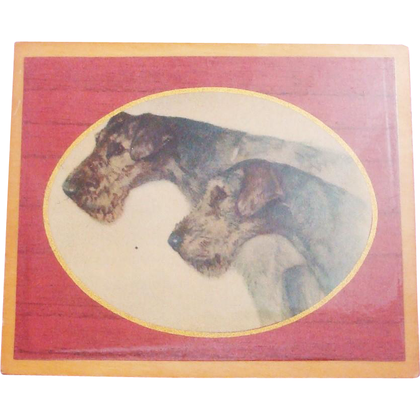 Vintage 1960's Airedale Terrier Dog Print