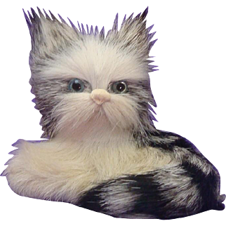 Adorable Real Fur Tabby Kitty Cat with Glass Eyes ~ Purrfect for your Doll