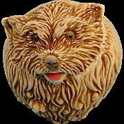 Harmony Kingdom Brando Roly Poly Dog Box Figurine