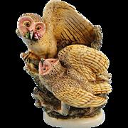 Harmony Kingdom Owls Treasure Jest Box Figurine Tender is the Night