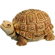 Harmony Kingdom One Step Ahead Turtle Box Figurine