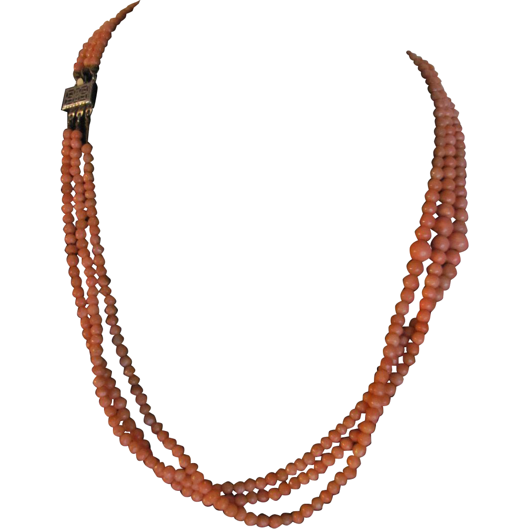 Victorian Natural Italian Coral Angelskin Graduated 3 Strand Necklace with *Certified Appraisal*