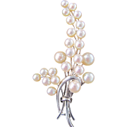 Vintage 14KT White Gold Sakata AA Quality Japanese Cultured Akoya Pearl 4.50-7mm Brooch Certified Appraisal $2350