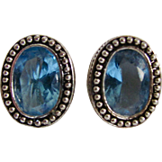 Vintage Avon of Belleville SP Aquamarine Paste Gems Clip Earrings --The Canadian other Avon company