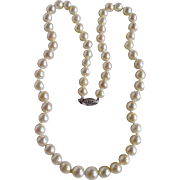 Vintage 14kt A+ Cultured Akoya Pearl Graduated to 9.50mm Necklace Certified Appraisal $3385