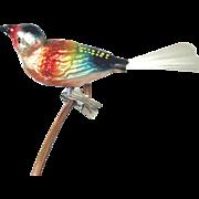 Clip Rainbow Bird West German Christmas Ornament