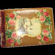 1904 Celluloid Velvet Autogragh Album Roses, Winter Scene
