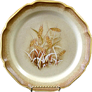Mikasa Whole Wheat Granola Dinner Plates 8 Available