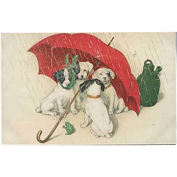 """Raining Cats and Dogs""  (1920)"