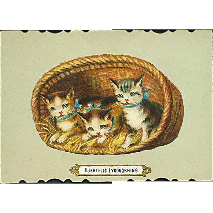"""""""Cute Kittens in Basket""""  (1910')"""