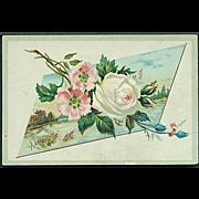 """""""White Rose""""  (1890)"""