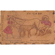 Antique Chicago Leather Telephone Donkey Postcard 1907
