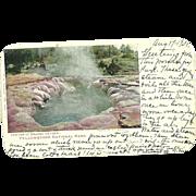 Yellowstone Park Crater Oblong Geyser Postcard Haynes Artist Signed Antique 1901