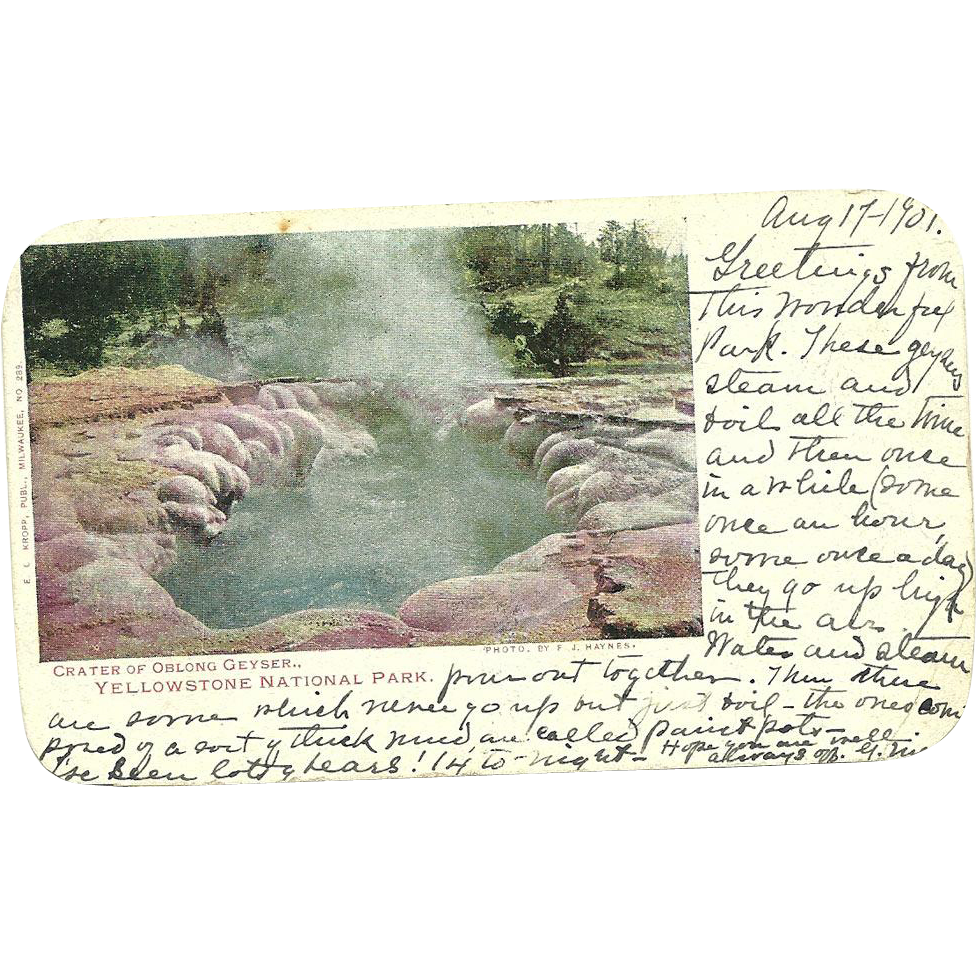 Yellowstone Park Crater Oblong Geyser Postcard Haynes Artist Signed Antique 1901