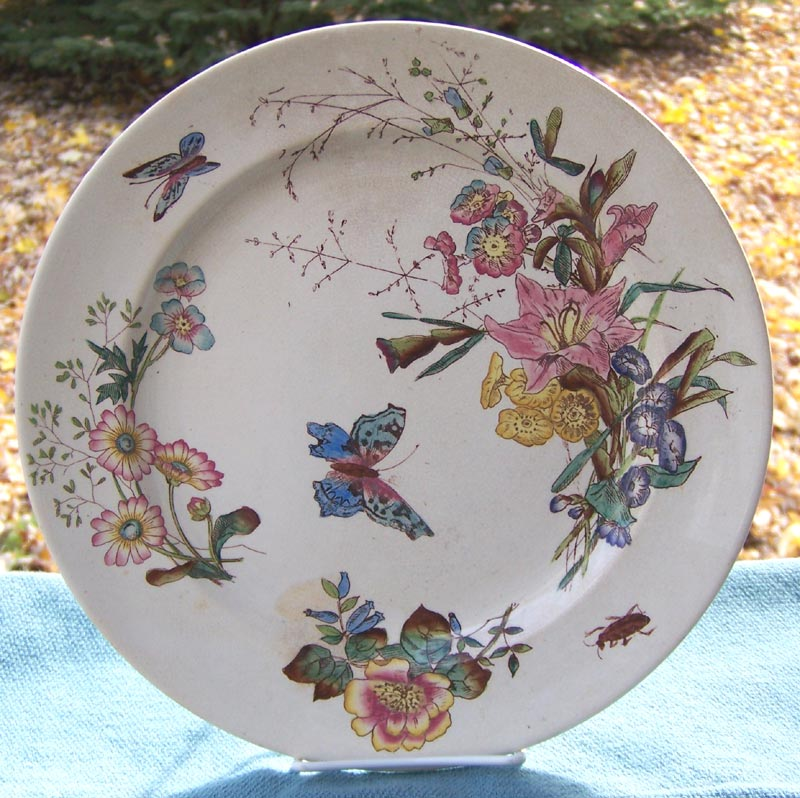 Forester Sons Aesthetic Polychrome Transferware Butterfly Plate Staffordshire
