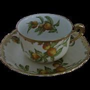 Antique Greenleaf Crosby T V Limoges Oranges Florida Pattern Cup & Saucer