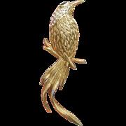 Big Signed Edgar BEREBI Rhinestone Bird of Paradise Vintage Pin