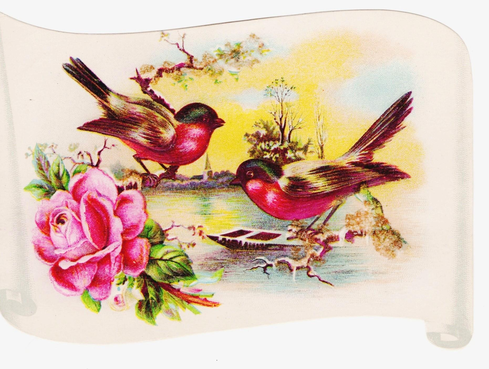 1890s Saint Louis Victorian Arithmetic School Achievement Scroll Lithograph Card Album Scrap - Birds & Rose Scroll - Spring Landscape - Glitter Coated Branches - Embossed