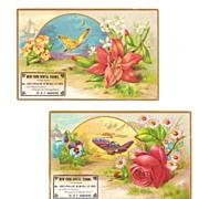 Two 1889 German Dentist Victorian Advertising Trade Cards - Embossed Butterflies and Flowers - Saint Louis, Missouri, Deutsche Dentist - New York Dental Rooms