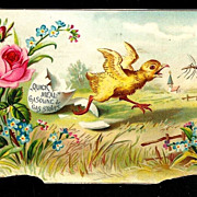 c1890 - Easter Baby Chick Album Scrap – Easter Egg Shell – Mosquito - Quick Meal Gas Stoves Victorian Era Trade Card - Roses - Spring Flowers