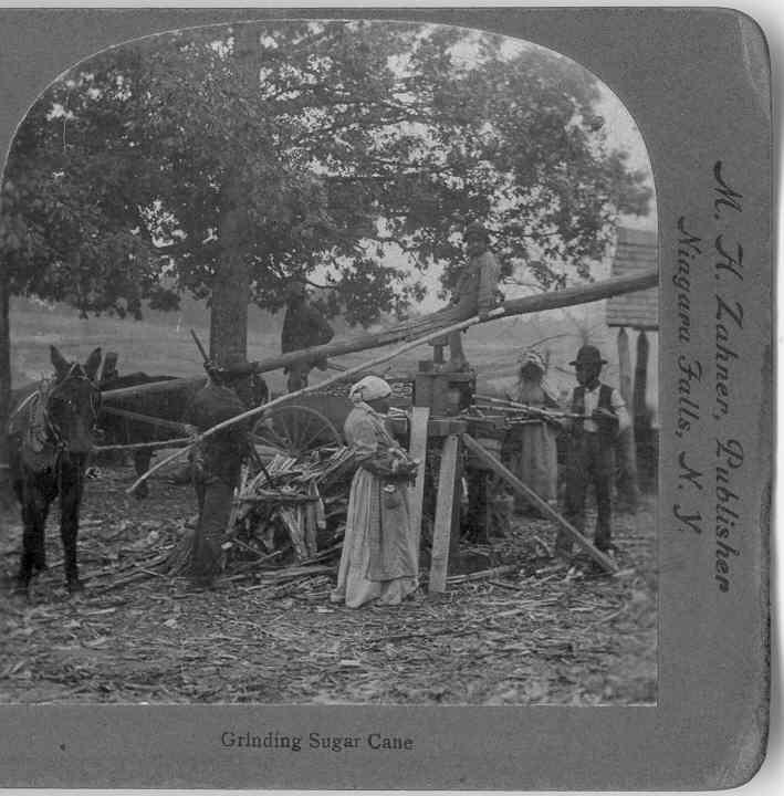 1890's RARE African American Stereo View - Georgia Sharecroppers Grinding Sugar Cane -:Jim Crowe Era Rural South - Griffith & Griffith View