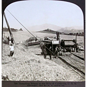 c1900 Sacramento Valley California Real Photo Vintage Stereo Views (7) - 1900 Grain Harvesting Farm Machinery - Horse-Drawn and Steam-Powered Farm Machinery - Combined Harvesters – Threshing Machine – H.C. White Co. Publisher