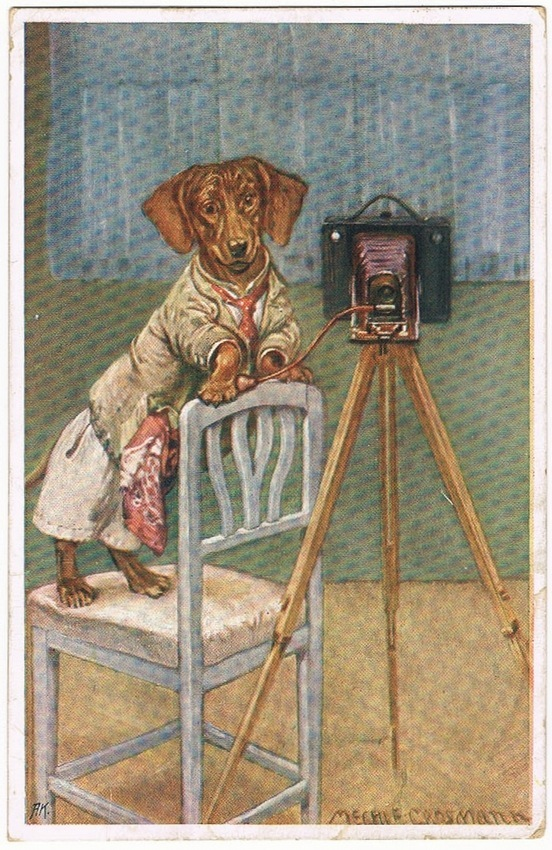 Funny old Postcard with Dachshund and Camera